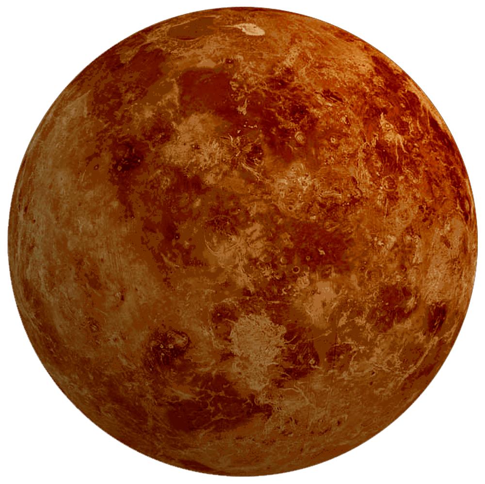 Venus Bild